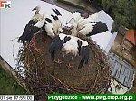 http://images1.fotosik.pl/128/45c6641778c5ddfbm.jpg