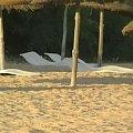 ''Korytka'' na plaży Hotelu Dalia, Hammamet, Tunezja. #HotelDalia #Dalia #Hammamet #Tunezja #Triada #korytka