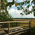 Pomost widokowy nad jeziorem Piskory #Piskory #pomost #taras