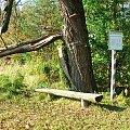 Przystanek na ścieżce dydaktycznej nad jeziorem Piskory #przystanek #ŚcieżkaDydaktyczna #Piskory #ławka #tablica