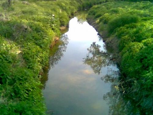Kurówka - widok z mostku #Kurów