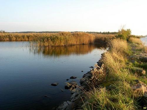 grobla i jezioro-coraz piękniejsze #jesień #jezioro #trzciny #widok #woda #przyroda
