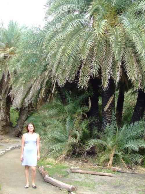 palma mi nie odbija
