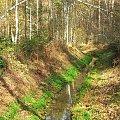 Rabik #Piskory #rezerwat #Rabik #rzeka #strumyk