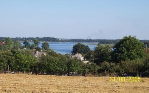 Widok z Powidza w stronę kominów w Koninie