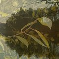 jesien nad jeziorem Otomino #impresja #jesień #jezioro