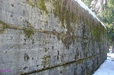 Szeroki Bór - kwatera Geringa