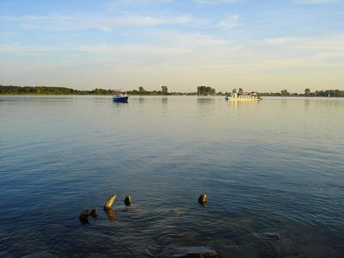 Jezioro Roś #JezioroRoś #Roś