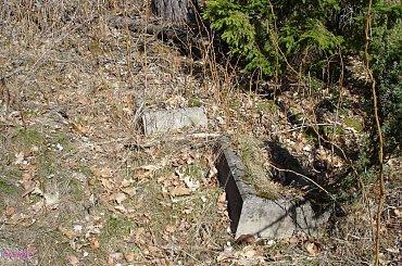 Rybitwy - nieczynny cmentarz ewangelicki