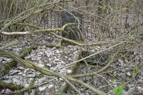Orłowo - cmentarz wiejski