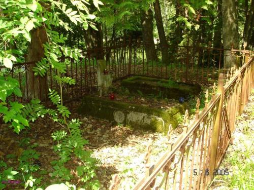 Cmentarz nad jeziorem Nicponek