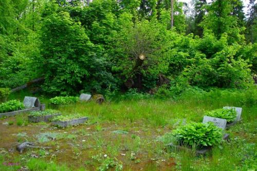Łupki - cmentarz wiejski #Łupki