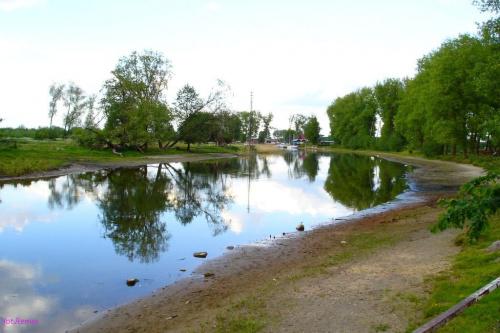 Rzeka Pisa #Pisa