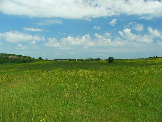Pułwy - teren otaczający Zakłady Azotowe #Puławy #Azoty