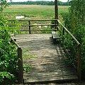 Pomost widkokowy nad jeziorem Piskory #Piskory #jezioro #rezerwat